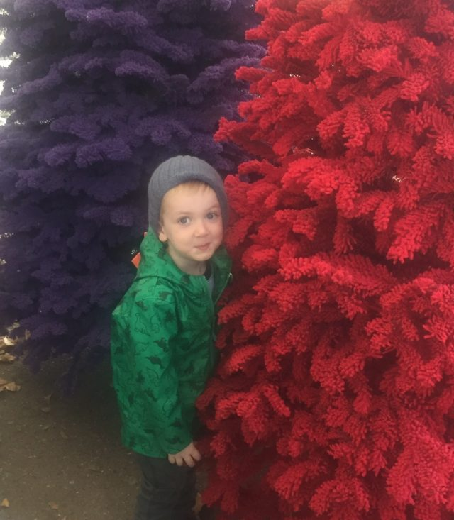 Red and purple flocked Christmas trees
