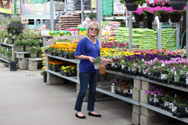 shopping for flowers