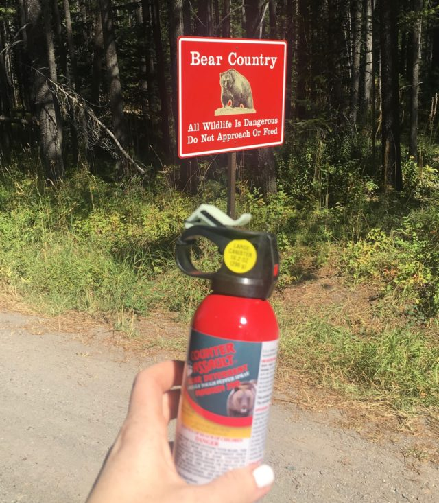 bear spray at Glacier national Park