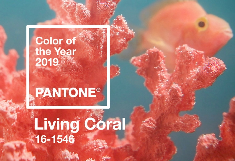 living coral color of the year on A Well Styled Life